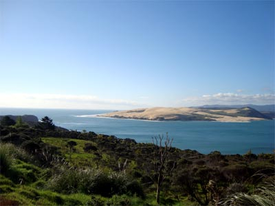 Hokianga Harbour from Pakia hill Photo