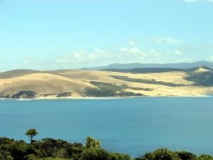 Hokianga Harbour 2 (Sand dunes)