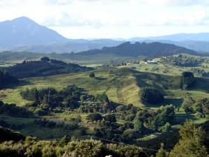 Hokianga countyside looking to the north side