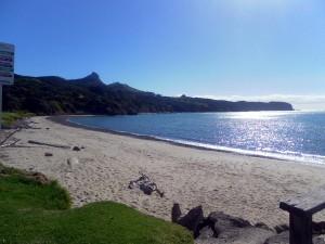 Omapere beach