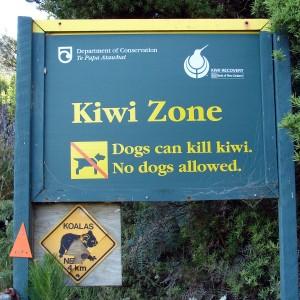 Signs of Kiwis
