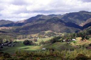 Whirinaki village from Koutu Loop Road